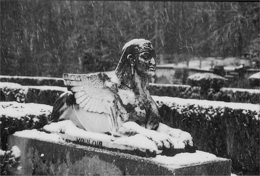 sphinx gauche sous la neige